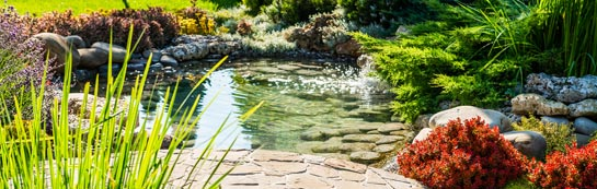 Riverside garden design and landscaping services